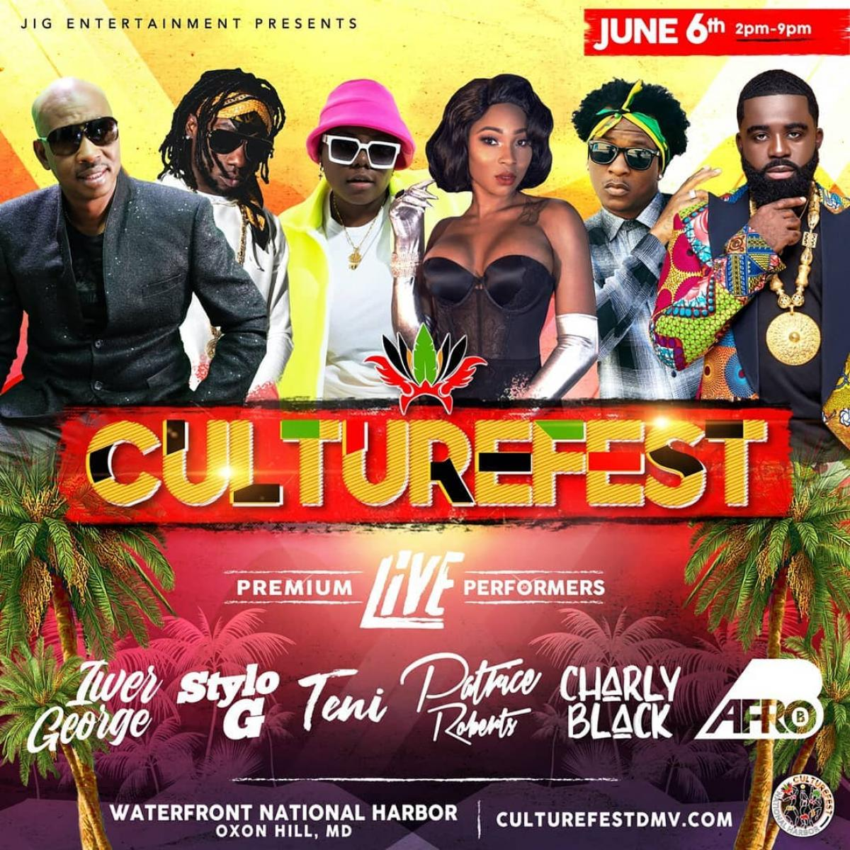 """CultureFest DMV 2020 """"Together As One"""" flyer or graphic."""