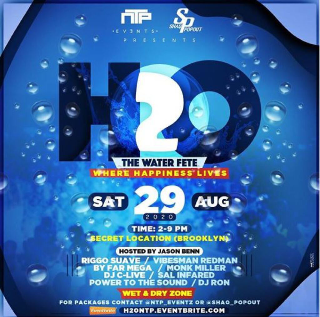 H20- The Water Fete flyer or graphic.