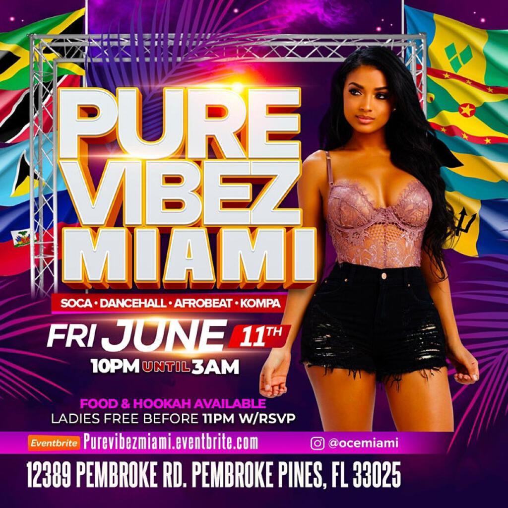 Pure Vibez Miami flyer or graphic.