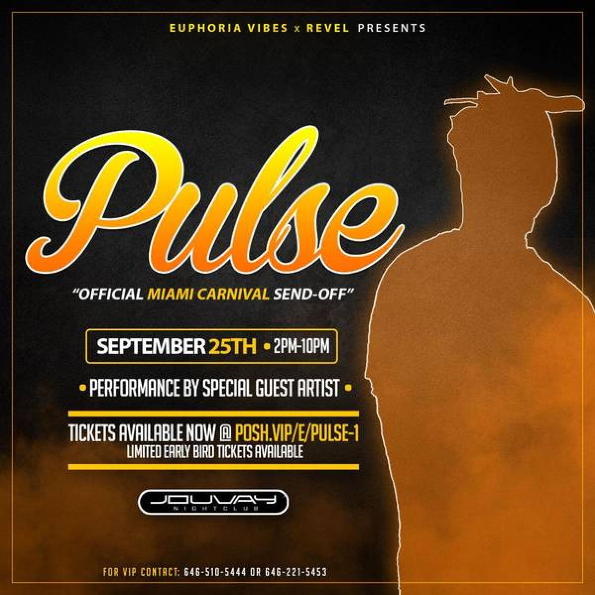 Pulse flyer or graphic.