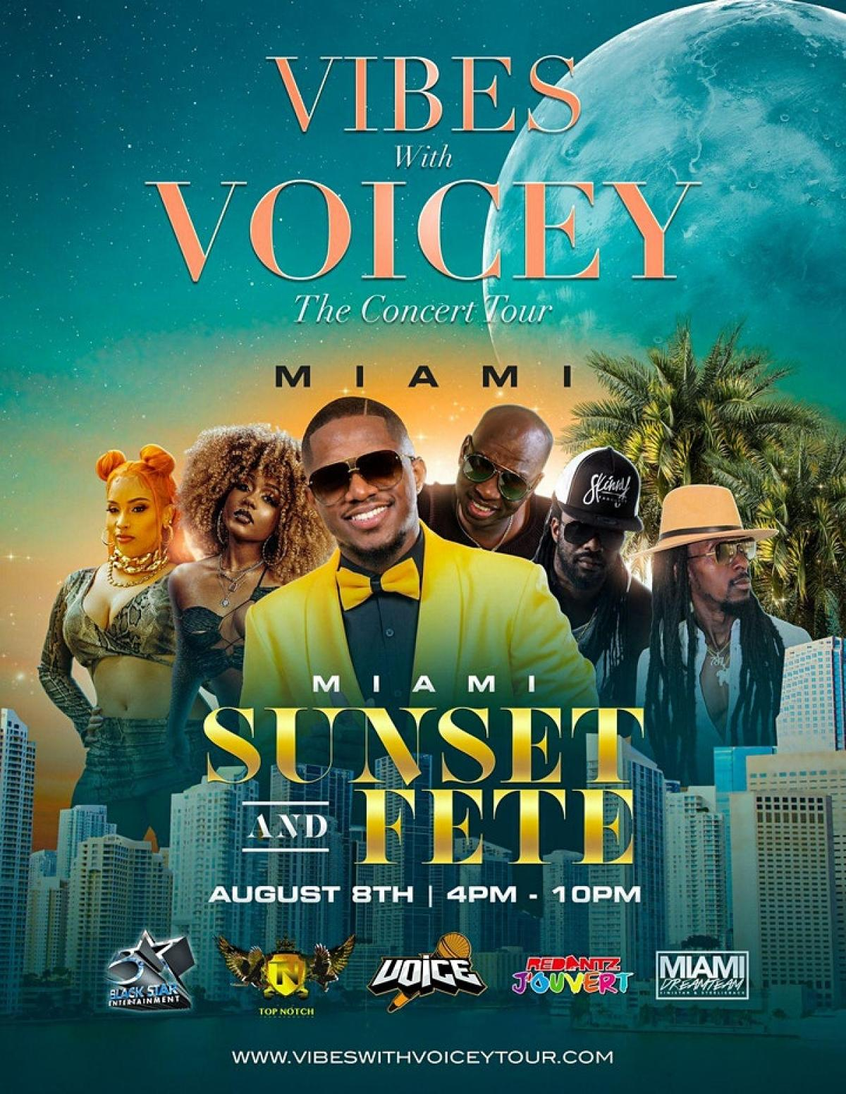 Vibes With Voicey: The Concert Tour Miami flyer or graphic.