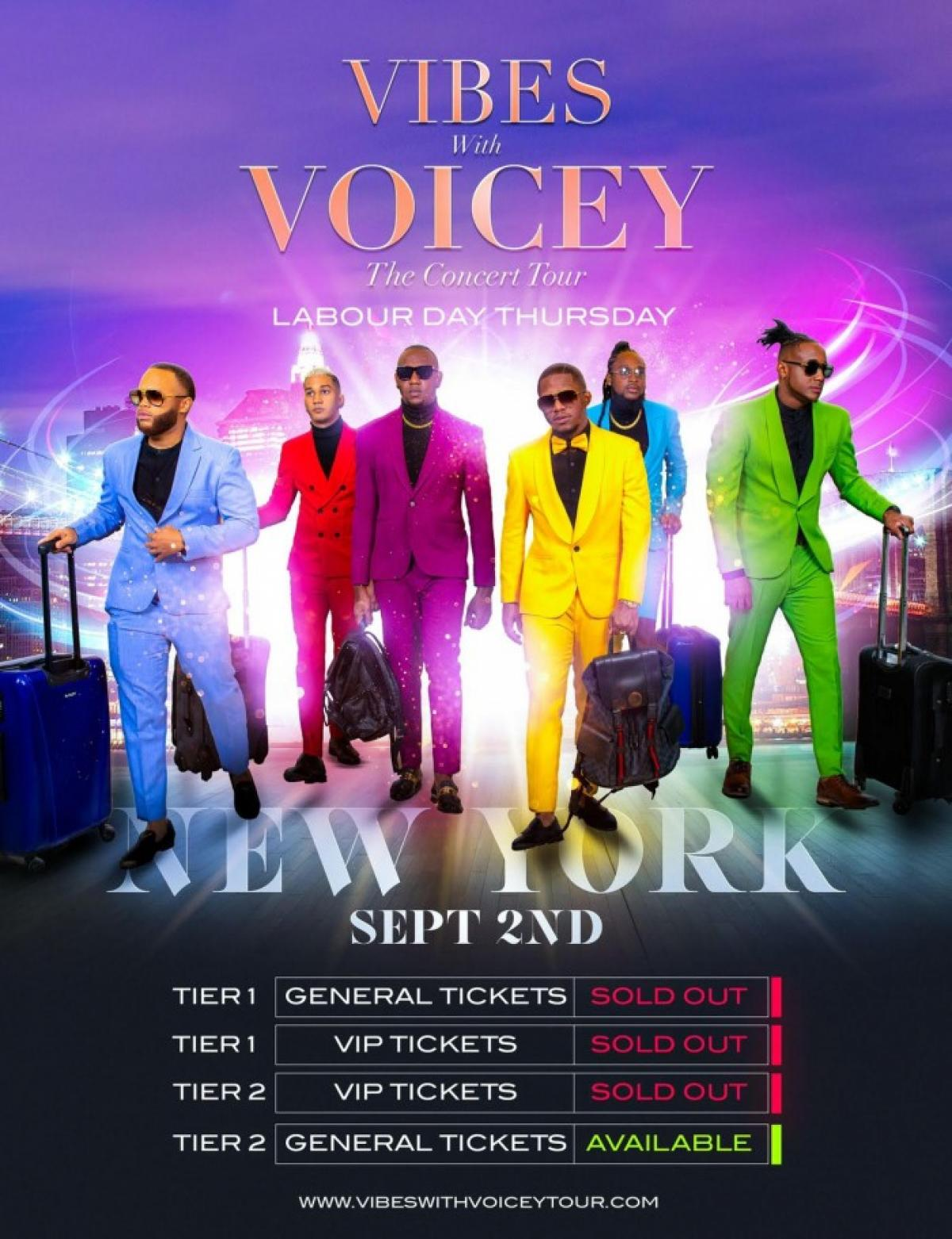 Vibes With Voicey: The Concert Tour New York flyer or graphic.